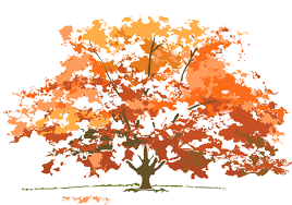 Fall Trees Clipart