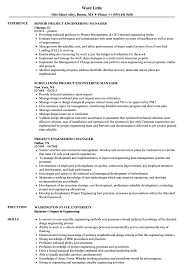 Download Project Engineering Manager Resume Sample As Image File
