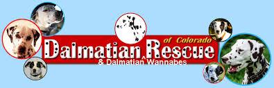 Kuranda Dog Beds by Dalmatian Rescue Of Colorado Inc Shopping Opportunities