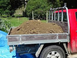 100 Seedling Truck Vegetables From Paradise My Vegetable Garden Diary