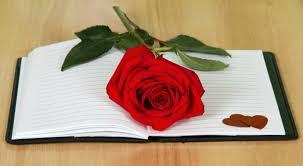 Siempre Te Voy A Querer Garden by Carta De Amor 10
