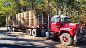 Norco In Wauchope Does Second Hay Run To Drought-stricken Farmers ... Gallery 4636 Temescal Ave Norco Ca 92860 Trulia New 2019 Ram 1500 Classic Express Crew Cab In 9954169 And Used Trucks For Sale On Cmialucktradercom Inc Whosale Distribution Intertional Transmission Jacks Carl Turner Equipment Eclipse Iconic 2817ckg Rvtradercom 8600 Dump Truck For Sunset Sign Designs Prting Vehicle Wraps Screen
