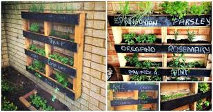 DIY Pallet Vertical Herb Garden Hanging Planter