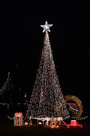Bethlehem Lights Christmas Tree With Instant Power by 40 Best Debi Ideas Images On Pinterest Church Stage Design