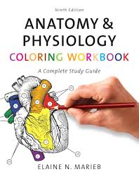 Anatomy Physiology Coloring Workbook A Complete Study Guide 9th Edition