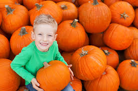 Pumpkin Patches Near Dallas Tx 2015 by Dallas Pumpkin Patch Preston Trail Farms Feed Farm Family