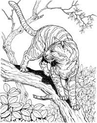 Click To See Printable Version Of Tiger In A Jungle Coloring Page