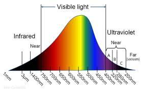 do yellow bug light bulbs work 1000bulbs