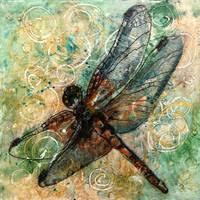 Stunning Dragonfly Artwork For Sale On Fine Art Prints