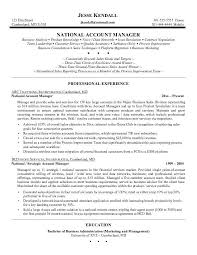 Excellent Resume Account Management