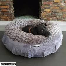 Tempur Pedic Dog Beds by Animals Matter Katie Puff Sydney Orthopedic Luxury Dog Bed
