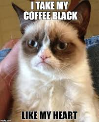 cat coffee grumpy cat s coffee imgflip