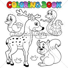 Coloring Book With Forest Animals 2 Vector Il