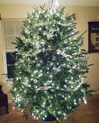 Christmas Tree Shop Falmouth Mass by Christmas Tree Shop Natick Coupon New Year Info 2019