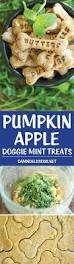 Pumpkin For Dog Constipation by 17 Best Images About Dog Food Treats And More On Pinterest