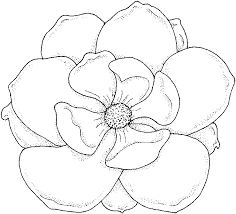 Tropical Flower Coloring Book Pages