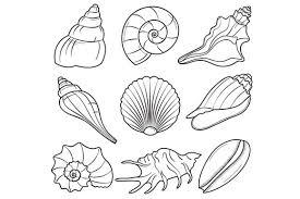 White Seashell Clipart Clip Art Library for Seashell Clipart Black And White