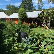 Our Permaculture Life: 5 Simple Ways To Improve Your Soil And Grow ... Thriving Backyard Food Forest 5th Year Suburban Permaculture Bill Mollison Father Of Gaenerd 101 Pri Cold Climate Archives Chickweed Patch Garden Design With Permaculture Kitchen Herb Spiral Backyard Orchard For The Yards Pinterest Orchards Australian House Garden January 2017 Archology Download Design And Ideas Gurdjieffouspenskycom Sustainable Farm Future Best 25 Ideas On Vegetable Youtube