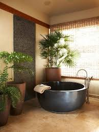 Good Plants For Bathroom by Indoor Bathroom Plants Home Design