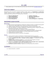 Sample Executive Summary Resume Examples