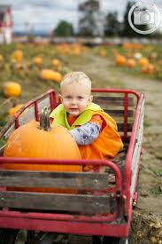 Snohomish Pumpkin Patch by 104 Best Photography Fall Images On Pinterest Family Portraits