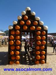 Pumpkin Patch Irvine University by Pumpkin Farms In Los Angeles A Socal Mom