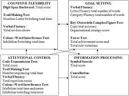 Brief Executive Function Test