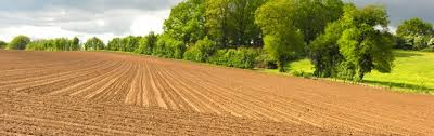 chambre d agriculture lozere organisation du réseau des chambres d agriculture chambres d