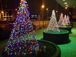 Fred Meyer Artificial Christmas Trees by Holidays 365 Photographs A Year In Pictures