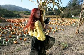 Pumpkin Patch Sf by Spellbound A Haunting In The Pumpkin Patch U2013 Valentina And Francesca