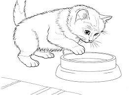 Kittens Coloring Pages Cute With Realistic Cat Footage Kitten Colouring Page Christmas Kitty