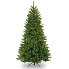National Tree Company North Valley Spruce