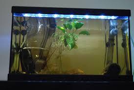 eclairage aquarium pas cher 9 re easy led 438 mm
