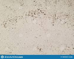 100 Travertine Facade From Vienna Natural Stone For The And