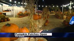 Maize Valley Pumpkin Patch by Roberta Gonzales Is At Johnny Moore U0027s Pumpkin Patch Youtube