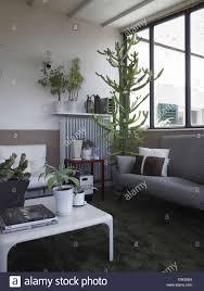 modernes wohnzimmer in einer wohnung in italien mit vielen