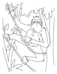 Chimpanzees Rope Ladder Coloring Pages