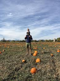 Pumpkin Patch Denver 2015 by Pumpkin Picking 7th Generation Farm In Louisville Co U2014 The