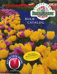 flower bulbs catalogs flowers ideas for review