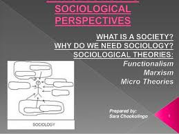 introduction to sociological perspectives