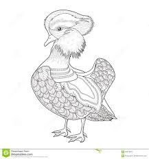 Lovely Mandarin Duck Coloring Page Exquisite Style 58878876