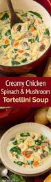 Haitian Pumpkin Soup Vegetarian 98 best haitian food images on pinterest caribbean recipes