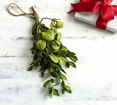 Live Mistletoe Bunch With Boxwood
