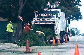 100 Truck San Francisco Tree Garbage Truck Citizen
