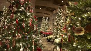 Fred Meyer Christmas Trees by Christmas And Holiday Traditions Around The World Meijer Gardens