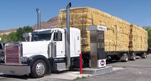 File:Scott Armas Hay Truck.jpg - Wikimedia Commons Truck Carrying Hay Rolls In Davidsons Lane Moore Creek Near Hay Ggcadc Flickr Bale Bed For Sale Sz Gooseneck Cm Beds Parked Loaded With Neatly Stacked Bales Near Cuyama My Truck And The 8 Rx8clubcom On A Country Highway Stock Photo Image Of Horse Ranch Filescott Armas Truckjpg Wikimedia Commons Hits Swan Street Richmond Rail Bridge Long Delays Early Morning Fire Closes 17 Myalgomaca Oversized Load On Chevy Youtube Btriple Trucks Allowed Oxley To Ferry Relief The Land A 89178084 Alamy