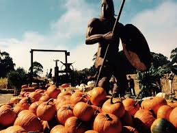 Half Moon Bay Pumpkin Patches by Mapping The Very Best Pumpkin Patches In The Bay Area