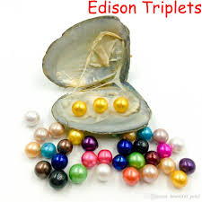 100 Where Is Dhgate Located 2019 2018 DIY Edison Triplets Pearls In Oysters Pearls Oyster Pearls
