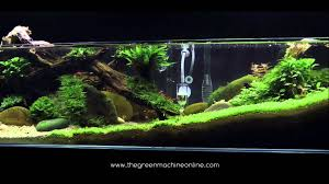 Tributary' Aquascape By James Findley - YouTube An Inrmediate Guide To Aquascaping Aquaec Tropical Fish Most Beautiful Aquascapes Undwater Landscapes Youtube 30 Most Amazing Aquascapes And Planted Fish Tank Ever 1 The Beautiful Luxury Aquaria Creating With Earth Water Photo Planted Axolotl Aquascape Tank Caudataorg 20 Of Places On Planet This Is Why You Can Forum Favourites By Very Nice Triangular Appartment Nano Cube Aquascape Nature Aquarium Aquascaping Enrico A Collection Of Kristelvdakker Pearltrees