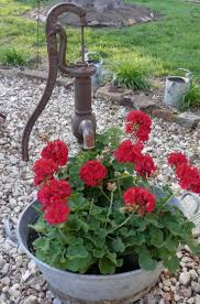 Decorative Outdoor Well Pump Covers by 1661 Best Old Fashion Water Pumps Images On Pinterest Backyard